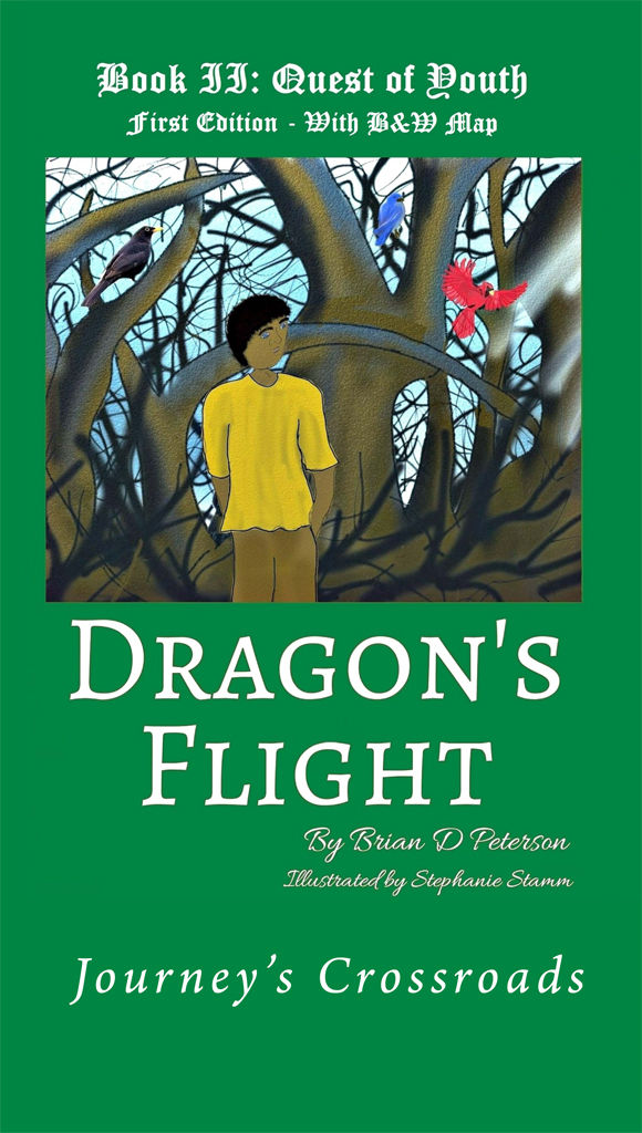 Cook Book Cover Quest : Dragon s flight ii quest of youth with b w map